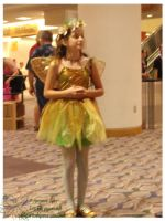 Gencon Indy Photo Series 06 by lilly-peacecraft