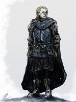 Ice and Fire - Brienne by yakuzafish