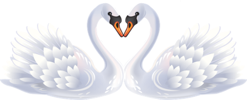 Two swans png by yotoots