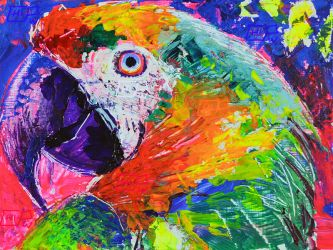 Parrot Colors by ChipWhitehouse