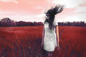 Fields of Red by sarakager
