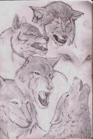 wolves by Silverback1