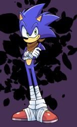 Sonic with blue arms by JamoART