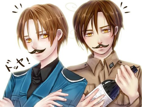 APH_Vargas brothers by Miu0813