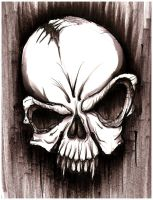 Skull Sketch by hardart-kustoms