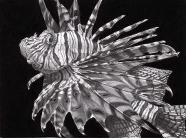 Lionfish by PunkyMeadows