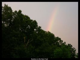 Rainbow in my Back Yard by olorinthewhite
