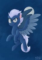 Night Glider by Pokekid963