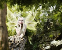 August Fairy by StormOwlArt