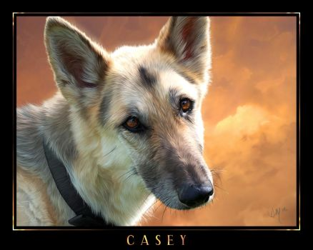 Casey by Novawuff