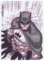 The Bat Man by jeffwamester