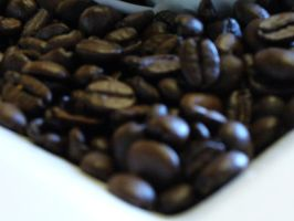 Coffee Beans by Toranih-stock