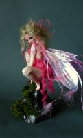 Pink Painted Faerie 3 by wingdthing