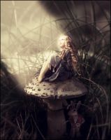 My Wonderland by AlexandraVBach