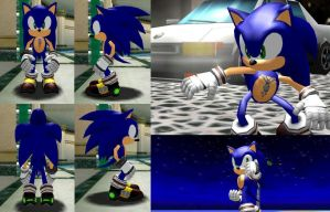 Sonic the Warrior Hedgehog by 2PlayerWins