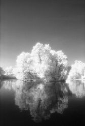 Lake in Parco Ducale, Parma by ilguidoz