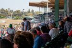 A Day at the Races 049 by ANPStudios