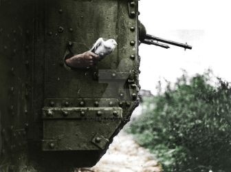 Messenger pigeon released from British tank 1918 by ruse59