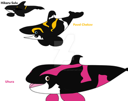 The Original Series/ 2009-2013 Star Trek  Orcas by Dolphingurl21stuff