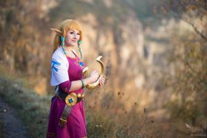 Princess Zelda - Legend of Zelda Skyward Sword by Shappi