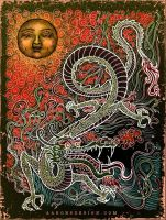 Sun and Dragon by aaronsdesign