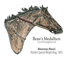 Beau : Maiden Special Weight - 1st by MistyofSunrise