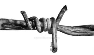 barbed wire by photonline