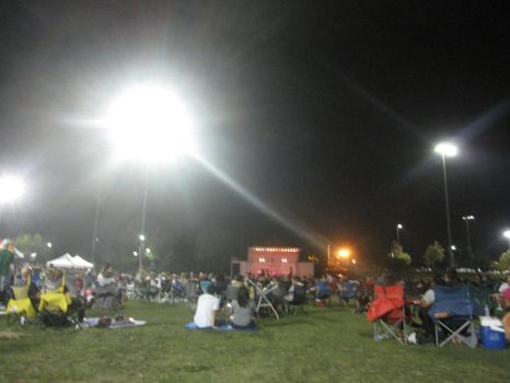 Grass Crowd watching Queen Concert at Night by EspioArtwork
