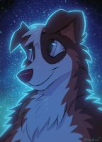 Night Collie by OrcaOwl