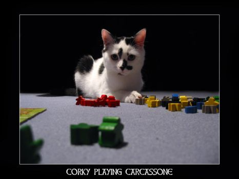 corky playing carcassone by trumpfass