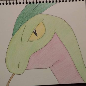 Grovyle from Pokemon Series by EJArt93