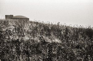 On the hill by etchepare