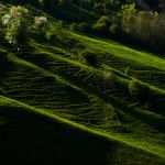 Slope in the Morning by comndr