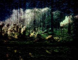 -Haunted Woods- by avataria