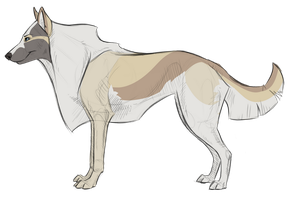 Long Hair Wolf Adopt (OPEN) by iiPaw