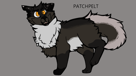 Patchpelt Reference by a-twilight-child