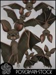 Toonimal Bat by poserfan-stock