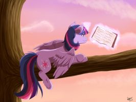 Evening Reading by StarRighzer