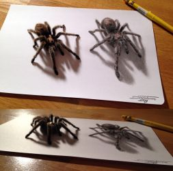Spider drawing by AtomiccircuS