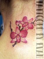 Little pink orchids by emcdclxvi