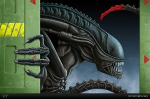 The Xenomorph by chris-illustrator