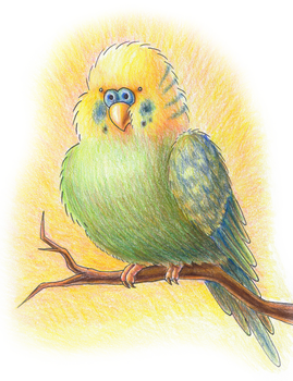Nostromo the Parakeet by Pickledsuicune