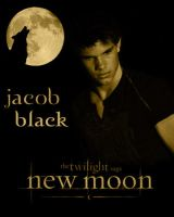 Team jacob 2 by BETHDELTA