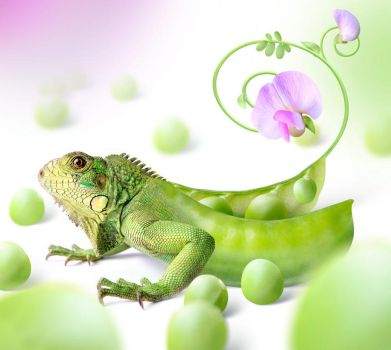 green dragon by StanOd