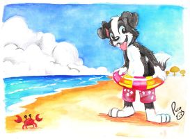 Roni on the beach by pandapaco