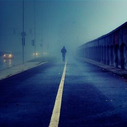 Morning Walk 3 by ghostrider-in-ze-sky