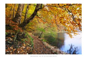 Plitvice Lakes 2012 - V by DimensionSeven