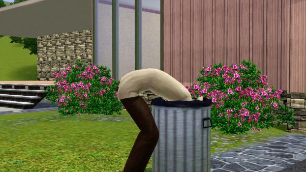 Sims 3 You Know What? by IHKF