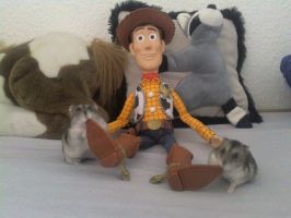 My Hamsters and my Woody by Mirinata