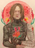 The Winter Soldier by timeturned